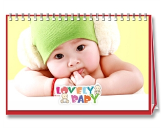 【Lovely Baby】13页台历